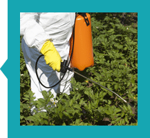 Mstr-Cls-Pest-Recert
